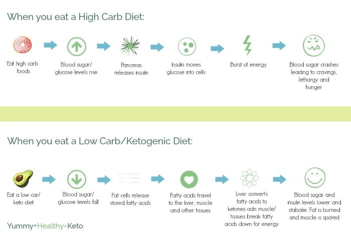 Graphic displaying what happens in your body when you eat a high carb diet, and when you eat a low carb/ketogenic diet. Part of the Keto Quick Start Guide.